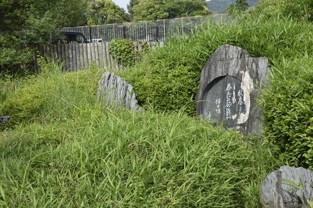 _子規の庭.JPG
